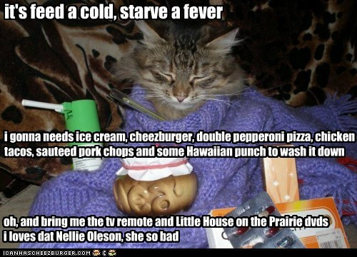 cat cold flu ill lazy Little House on the Praire lolcat sick tired