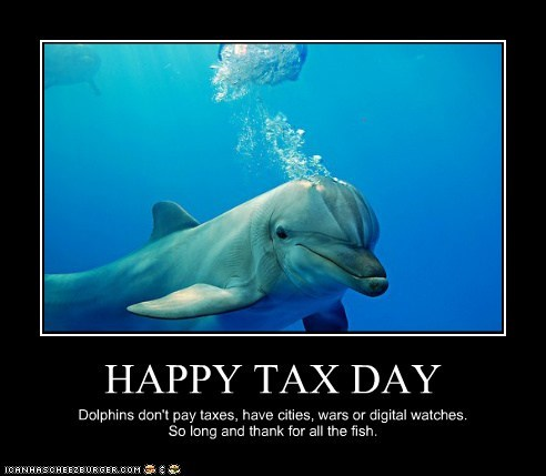 HAPPY TAX DAY Dolphins don't pay taxes, have cities, wars or digital watches. So long and thank for all the fish.