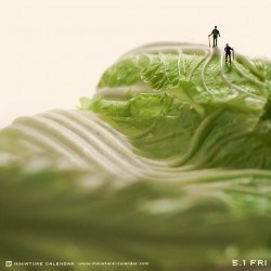 Tatsuya,pictures,art,tiny,diorama,instagram,Tanaka,miniature calendar