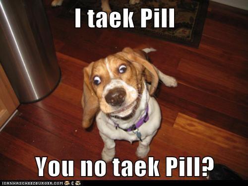 derp drugs goggie pill - 6116121600