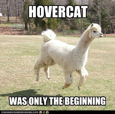 beginning floating hover HoverCat I WANT TO BELIEVE llama