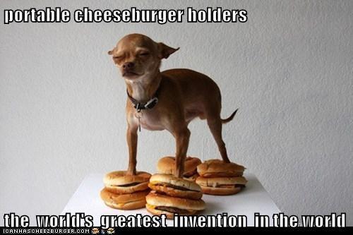 Cheezburger Image 6116333056