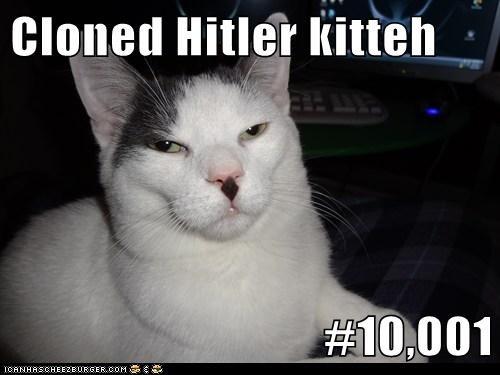 Cloned Hitler kitteh  #10,001