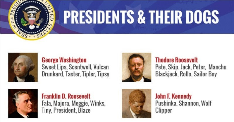 dogs patriotic president infographics names - 6118405