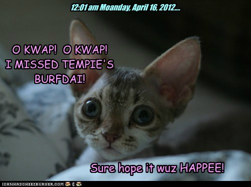 12:01 am Moanday, April 16, 2012.... O KWAP! O KWAP! I MISSED TEMPIE'S BURFDAI! Sure hope it wuz HAPPEE!