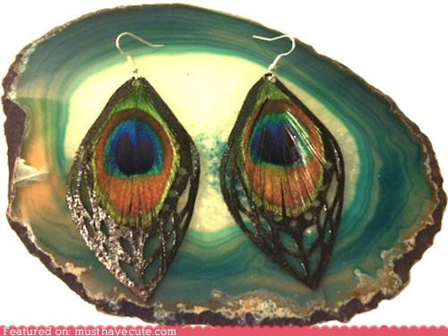 earrings fancy feathers peacock peacock feathers - 6119467008