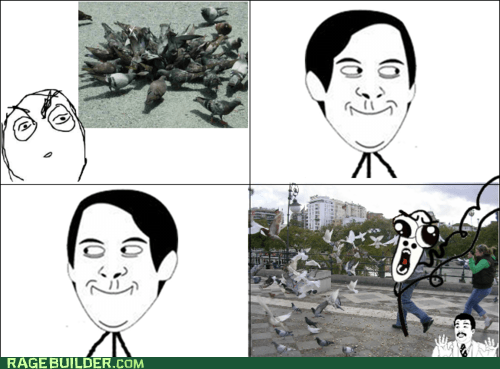 omg run,pigeons,Rage Comics,spiderpman
