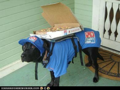 Domino's pizza searching for faster delivery methods... They're really roling the dice on this one !