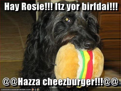 Cheezburger Image 611989760