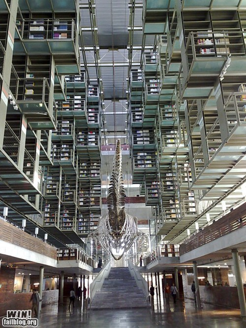 architecture,design,library,mexico
