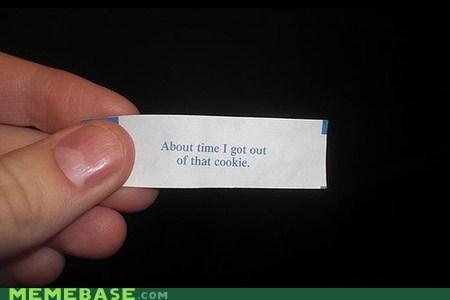 cookies fortune fortune cookie IRL - 6120693248