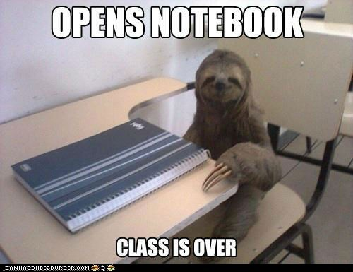 class,Memes,notebooks,over,school,sloth,sloths,slow