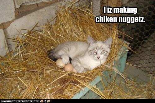 I iz making chiken nuggetz.