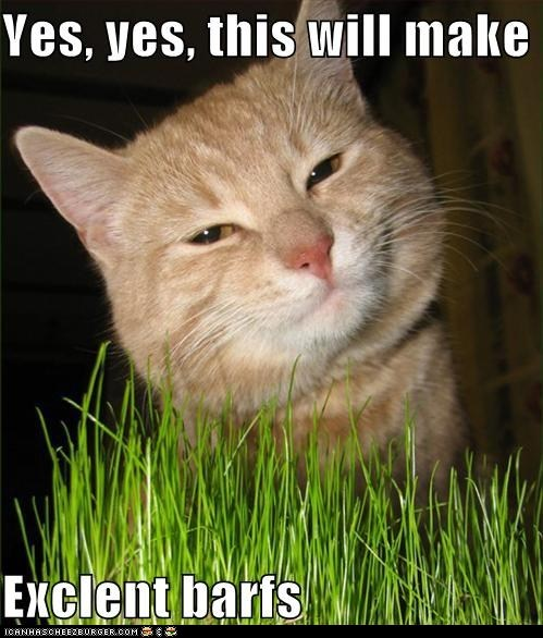 vomit gross captions grass barf Cats from the vault - 6121812480