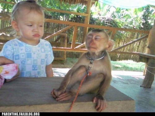 baby,look alikes,monkey