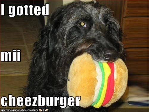 Cheezburger Image 612202240