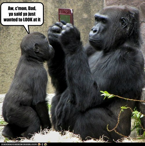 come on dad gorillas hogging look nintendo ds playing video games - 6122976768