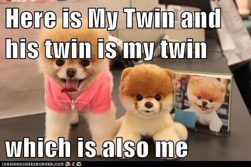 Cheezburger Image 6123258368