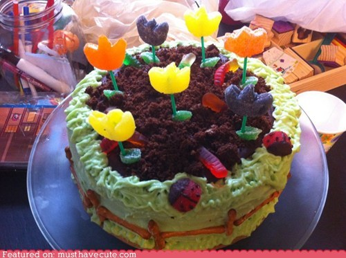 cake,candy,chocolate,epicute,flowers,garden,Party,soil