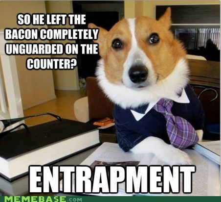 bacon,crime,entrapment,Lawyer Dog,Memes
