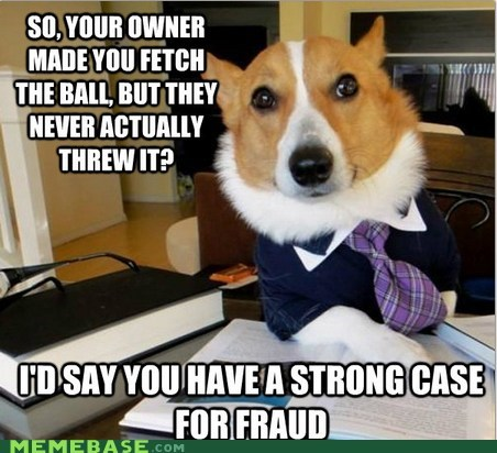 ball fraud Lawyer Dog Memes throwing - 6124042240