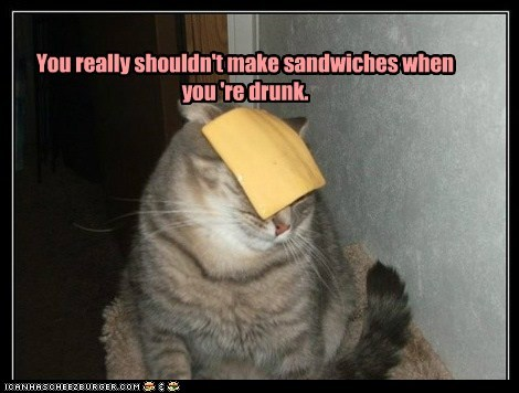 alcohol cheese drunk face food lolcat nom sandwich