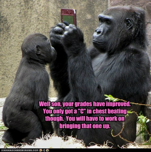 gorillas,grades,moms,nintendo ds,parents,report card,school,son