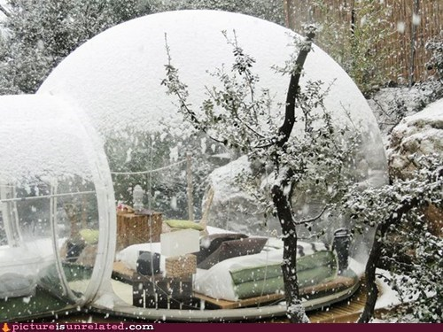 bed bubble house wtf - 6124367104
