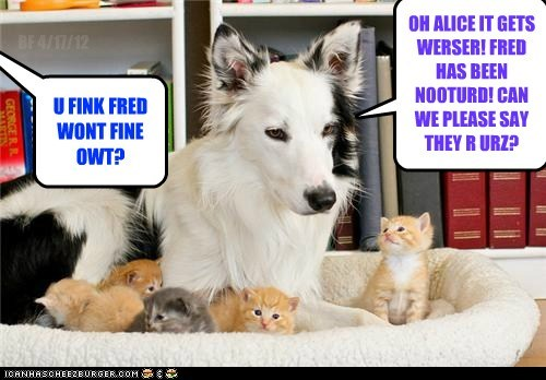 OH ALICE IT GETS WERSER! FRED HAS BEEN NOOTURD! CAN WE PLEASE SAY THEY R URZ? BF 4/17/12 U FINK FRED WONT FINE OWT?