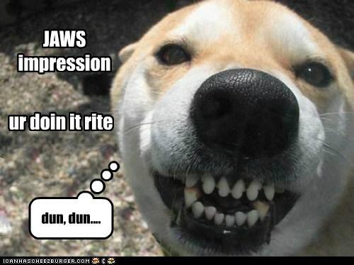 JAWS impression ur doin it rite dun, dun....