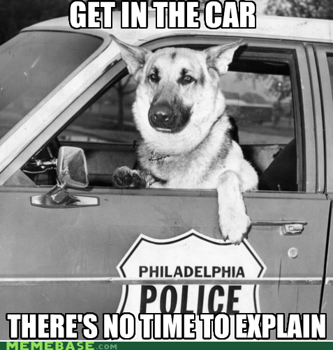 car,cop,dogs,get in the car,Memes,no time to explain,police