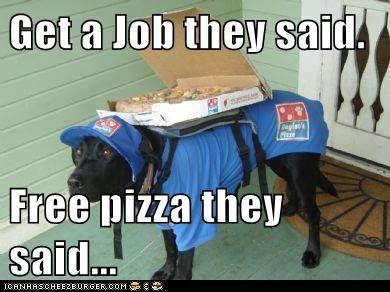 job labrador pizza - 6125499392