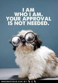 approval Be Yourself best of the week dogs glasses Hall of Fame me self what breed