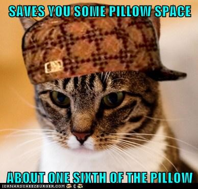 Scumbag Cat - 6125667072