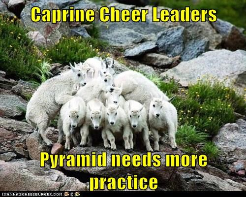 caprine,cheerleading,Close Enough,goats,needs work,pyramid