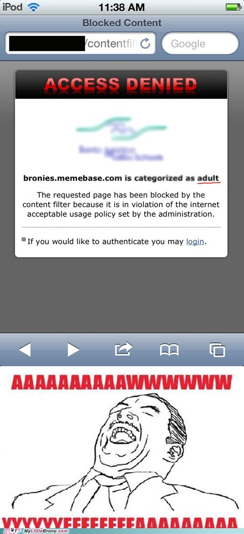access denied adult awww yeah blocked IRL memebase - 6125804544