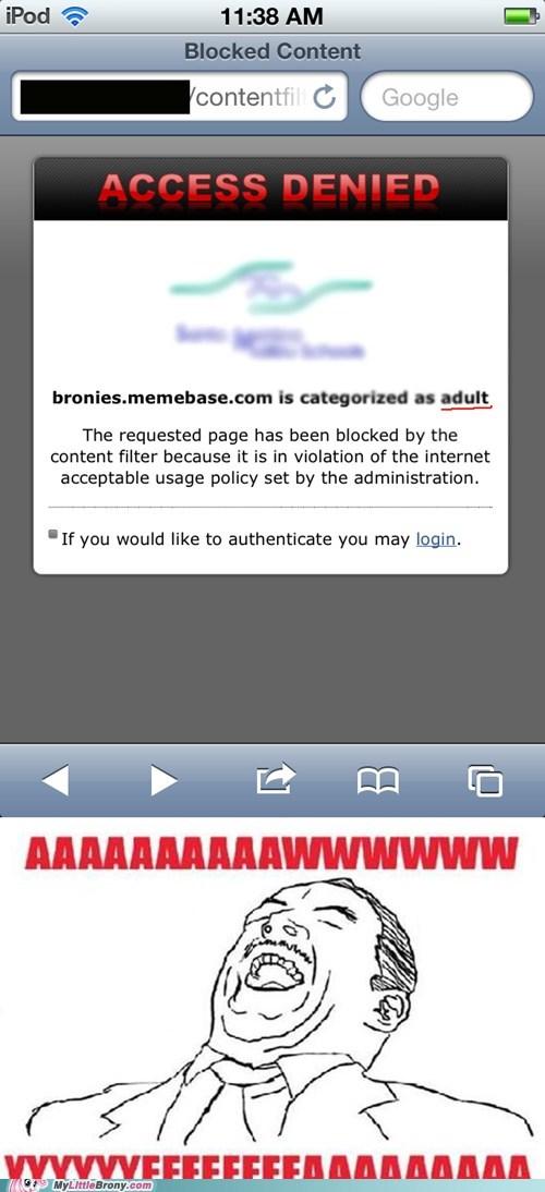 access denied adult awww yeah blocked IRL memebase - 6125804544