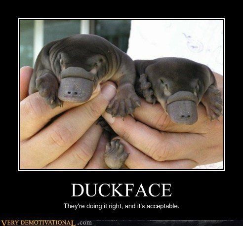 doing it right duckface hilarious platypus