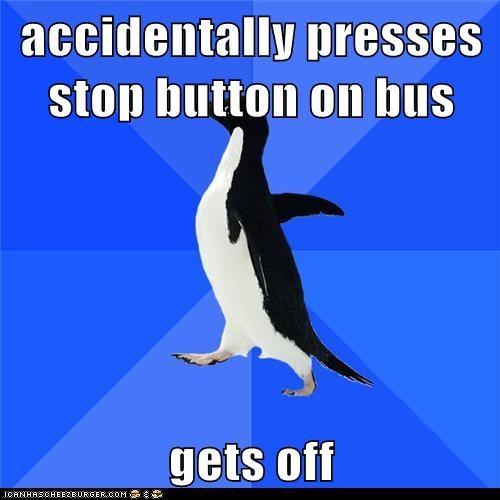socially awkward penguin - 6127036672