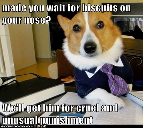 biscuits,cruel and unusual,dogs,law,Lawyer Dog,Lawyers,punishment