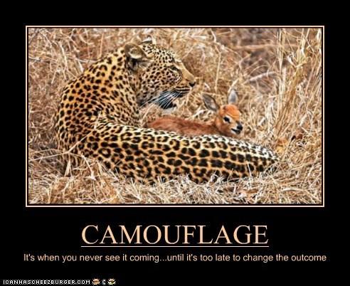 Cheezburger Image 6127749632