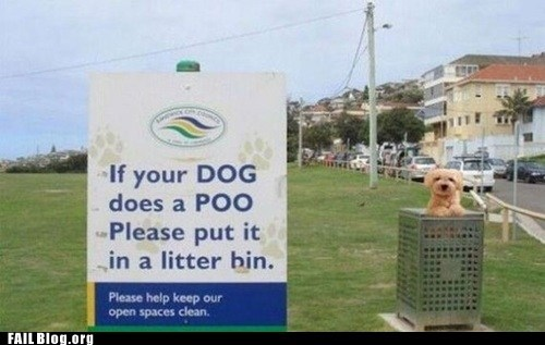 dogs litter poo sign fail