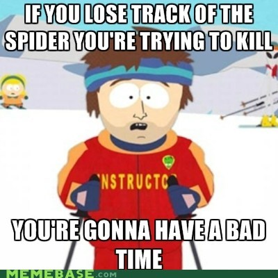 bad time kill Memes ski instructor sleep spider - 6128252928