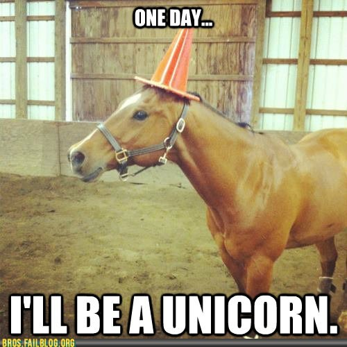 horse,manimals,unicorn