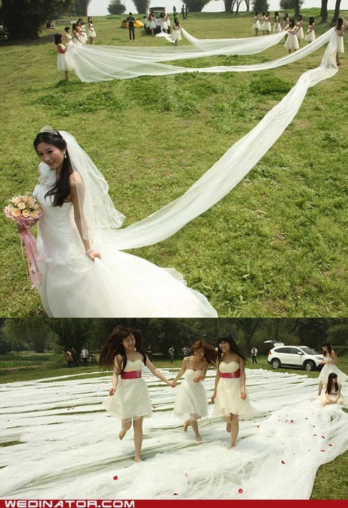 China funny wedding photos long train train wedding dress - 6128407808