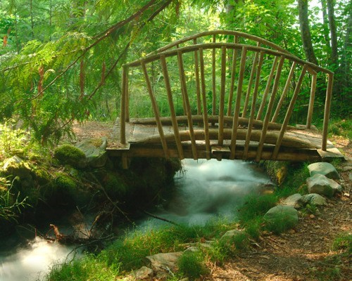 bridge,Canada,Forest,river