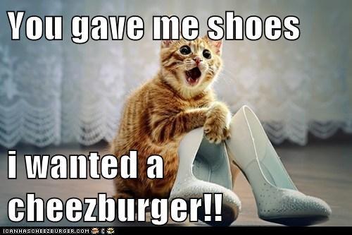 Cheezburger Image 6128783616