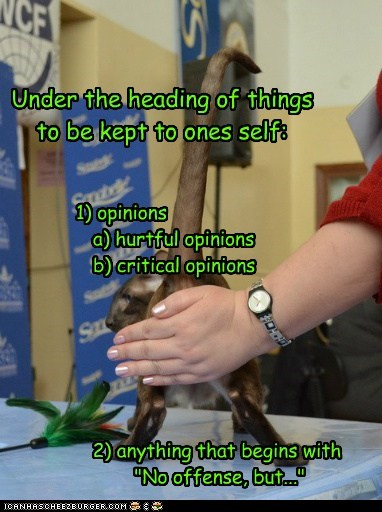 """Under the heading of things to be kept to ones self: 1) opinions a) hurtful opinions b) critical opinions 2) anything that begins with """"No offense, but..."""""""
