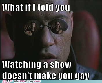 gay meme my little pony the matrix tv show - 6129180160