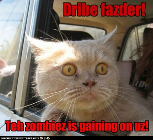 car,cat,chase,danger,drive,get in the car,zombie